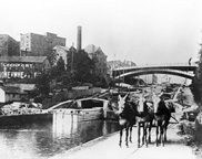 Photo of canal with harnessed horses in foreground in Lockport, N.Y.